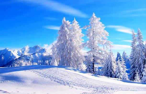 идеи для зимнего бизнеса